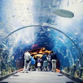 zv6y73 استديو الصور :دبي في At the Top + Dubai Aquarium