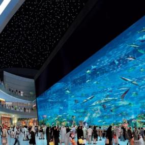 3pjgq3 استديو الصور :دبي في At the Top + Dubai Aquarium