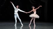 Ballet Under The Stars 2019 in Dubai: Gallery Photo z7x6d3
