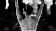 Ballet Under The Stars 2019 in Dubai: Gallery Photo 3bj6yn