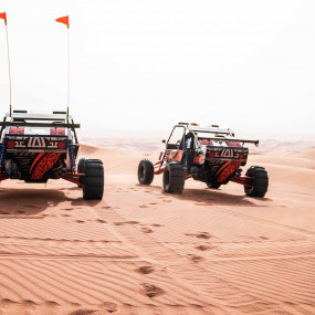 Photo from Dune Buggy Safari with Private Dinner in Sharjah: Gallery Photo zge41n