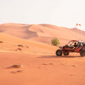 Dune Buggy Safari with Camp Dinner and Desert Activities in Sharjah: Gallery Photo zo444n