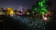 Al Noor Island - Sharjah in Sharjah: Gallery Photo mn1odz