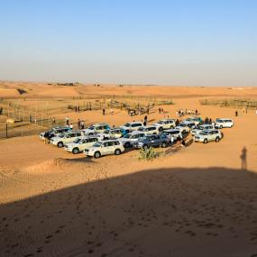 jzo44n استديو الصور :دبي في Deluxe Desert Safari with BBQ and Transfer