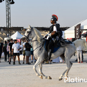 Photo from World's Ultimate Strongman: Beasts in the Middle East in Dubai: Gallery Photo zoog6z