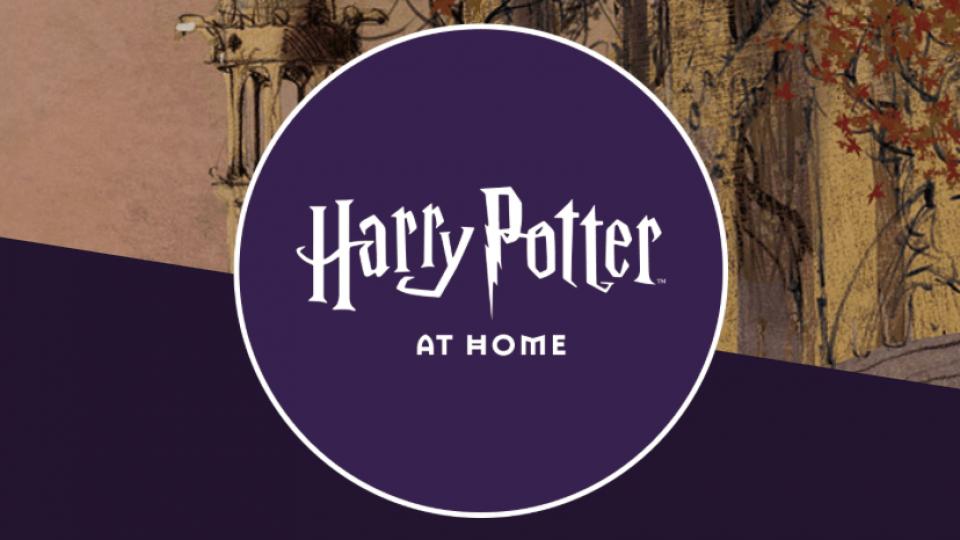 هاري بوتر في البيت - جلب Hogwarts لك, فعاليات البث المباشر