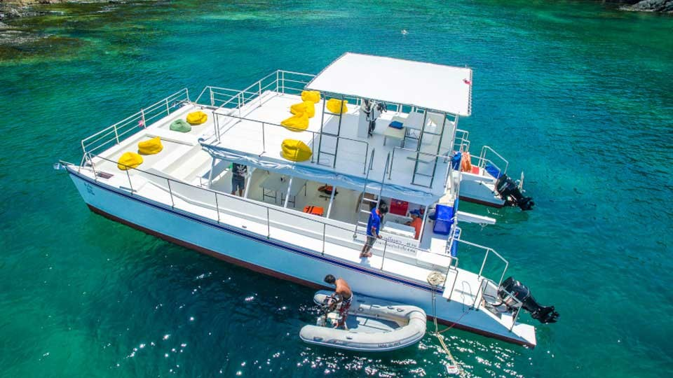 Island Hopping By Yacht,Cebu Yacht Club,Tours