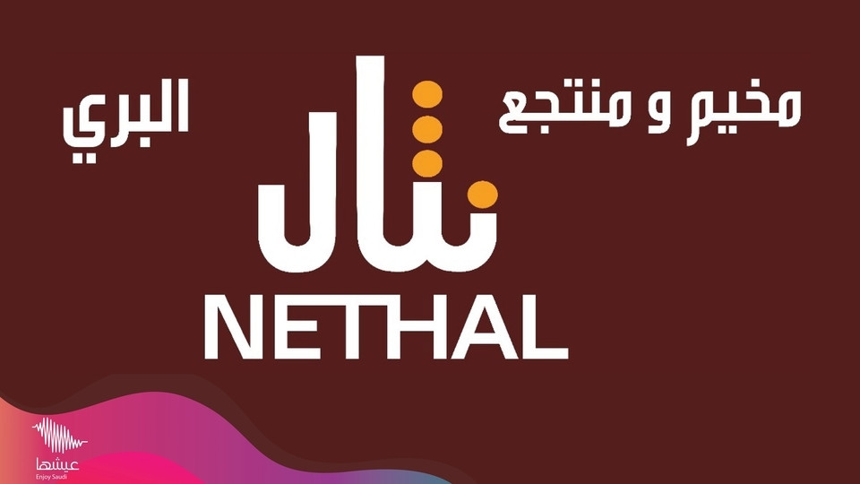 Nathal Winter Camp,Qassim National Park,Festival